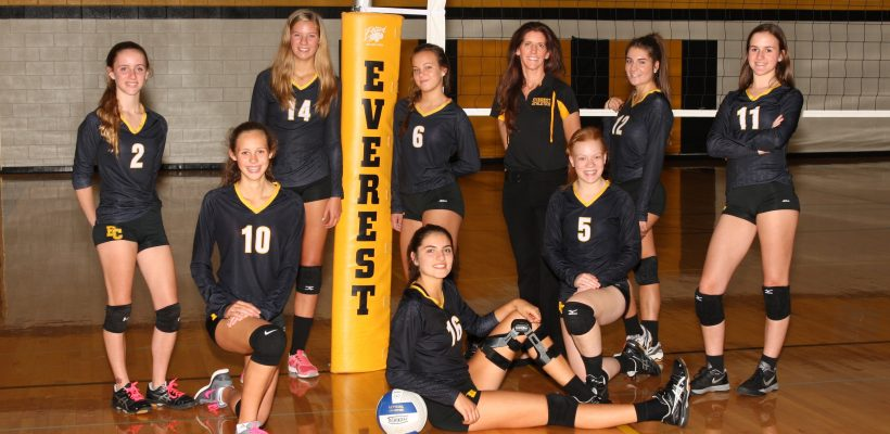 Volleyball Team Receives All State Academic Honors