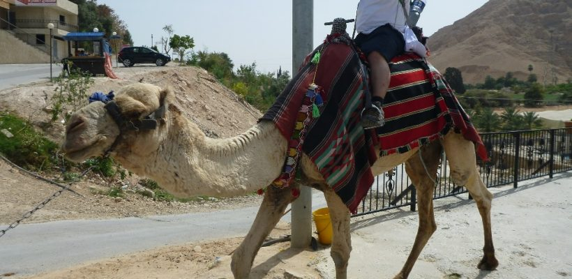 Holy Land Pilgrimage 4